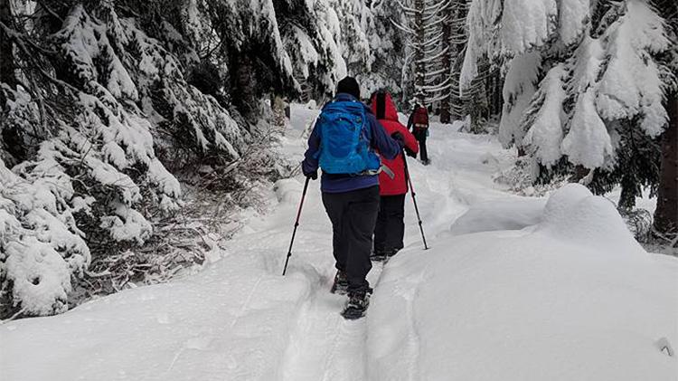 June Lake Snowshoe