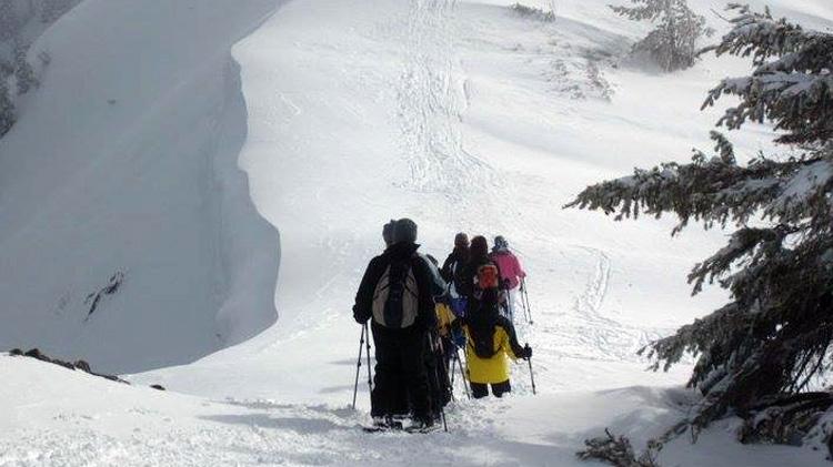 Hurricane Ridge Snowshoe