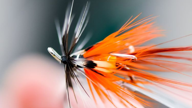 Fly-tying classes