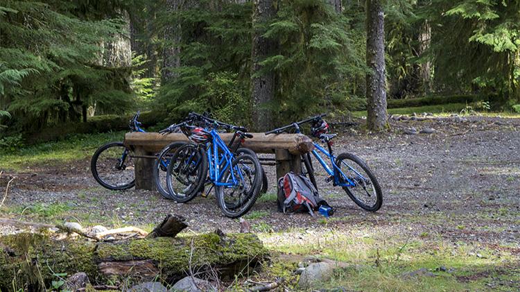 Carbon River Bike Ride