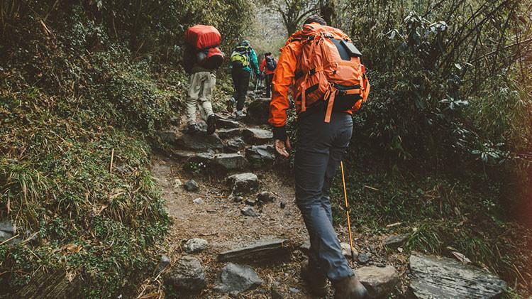 Hike Wallace Falls